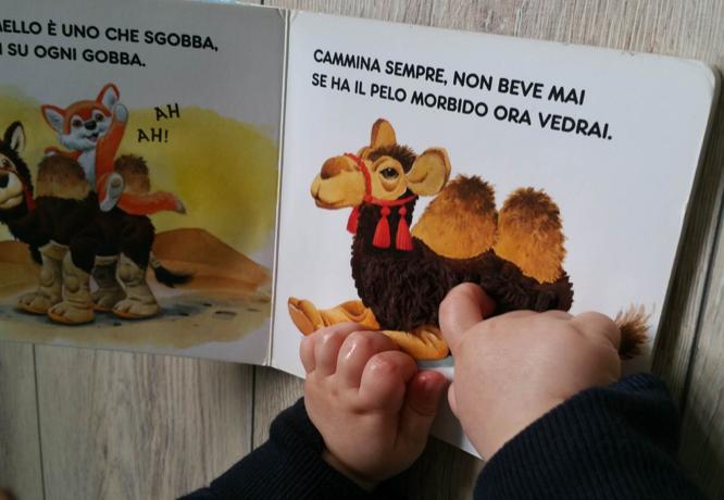 I libri sensoriali asilo nido roma aurelia massimina for Graduatorie asilo nido roma